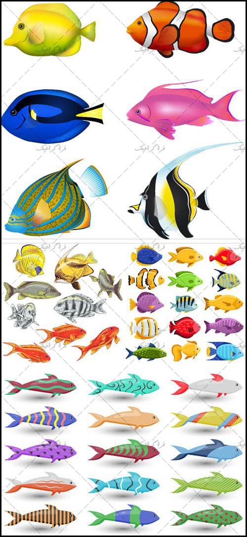 دانلود وکتور های ماهی طرح کارتونی - رایگان