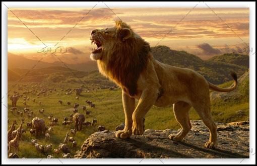 دانلود والپیپر دسکتاپ فیلم The Lion King 2019