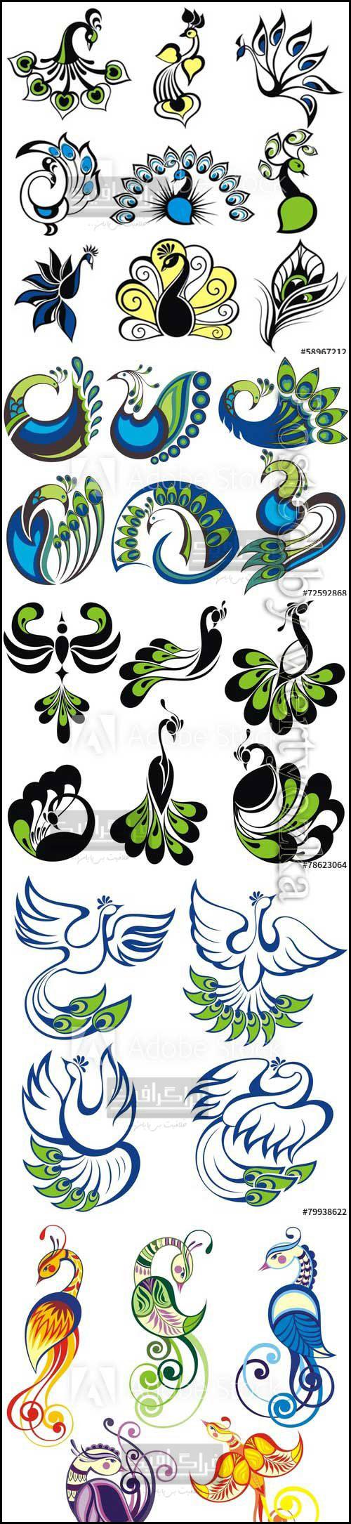 دانلود وکتور های نماد پرنده طاووس