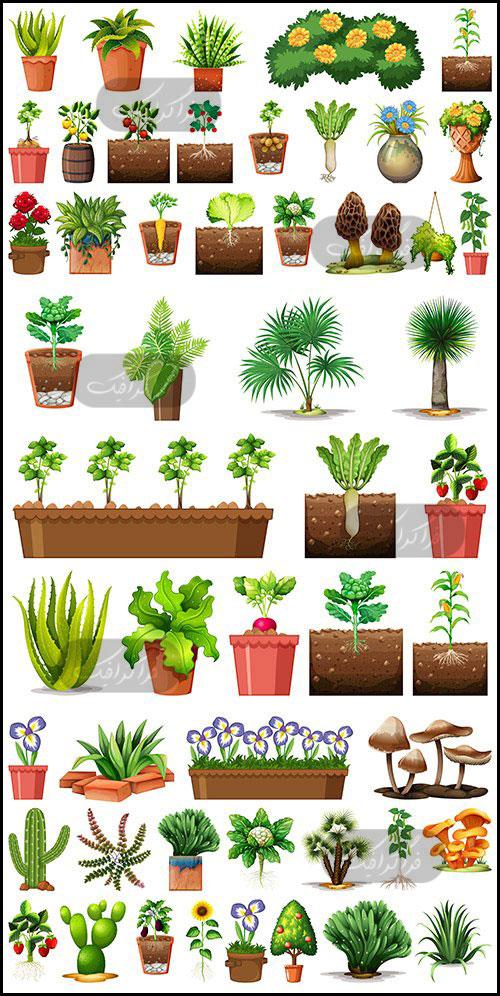 دانلود وکتور های گل و گیاه و گلدان