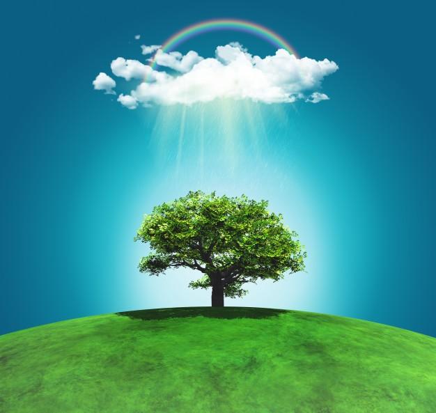 تصویر استوک چمن زار و درخت با رنگین کمان ابری - رایگان