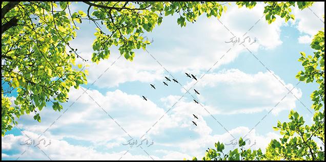 تصویر آسمان مجازی - طرح درخت - پرندگان - شماره 5