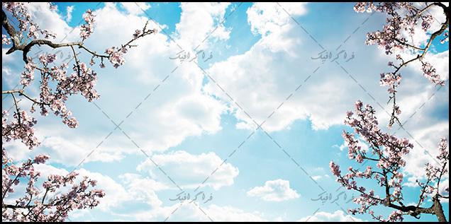 تصویر آسمان مجازی - طرح ابری - شکوفه
