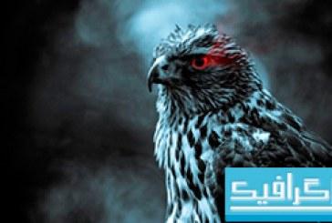 دانلود والپیپر چشم عقاب
