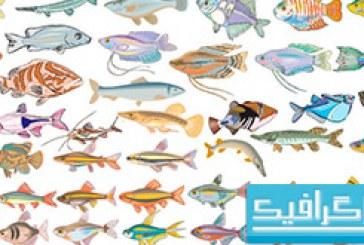 دانلود آیکون های ماهی