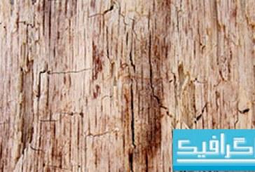 تکسچر های پوست درخت – شماره 1