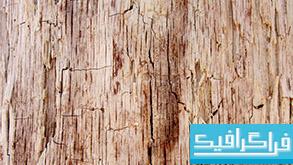 تکسچر های پوست درخت - شماره 1