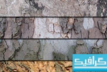 تکسچر های پوست درخت – شماره 2