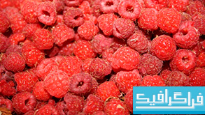 دانلود والپیپر تمشک Raspberries