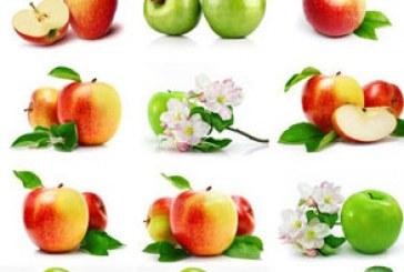 دانلود تصاویر استوک سیب