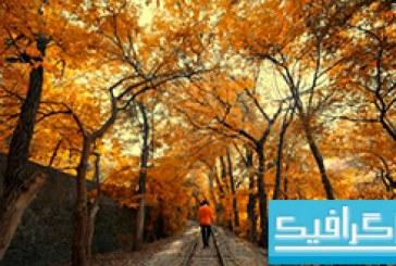 دانلود والپیپر پاییز Autumn – شماره 3