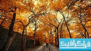 دانلود والپیپر پاییز Autumn - شماره 3