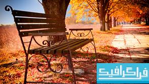 دانلود والپیپر پاییز Fall Colors
