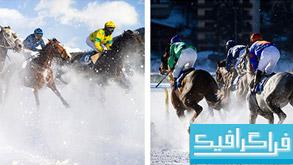 دانلود تصاویر استوک مسابقه سوارکاری با اسب روی برف