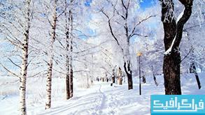 دانلود والپیپر زمستان Winter Wonderland