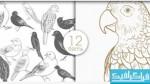 دانلود براش های فتوشاپ پرنده