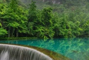 دانلود والپیپر آبشار جنگل