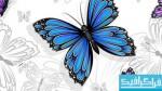 وکتور های پروانه