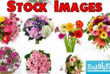 تصاویر استوک دسته گل – شماره 2