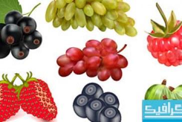 وکتور های میوه و سبزیجات
