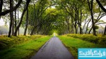 دانلود والپیپر طبیعت در اسکاتلند