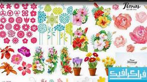 دانلود وکتور های گل مختلف