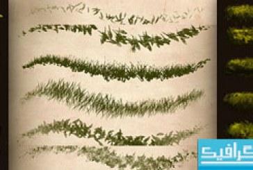 دانلود براش های فتوشاپ چمن – مجموعه کامل
