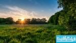 دانلود والپیپر غروب خورشید در چمن زار