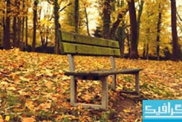 دانلود والپیپر پاییز – شماره 6