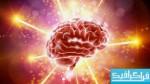 دانلود وکتور های مغز انسان - مفهومی