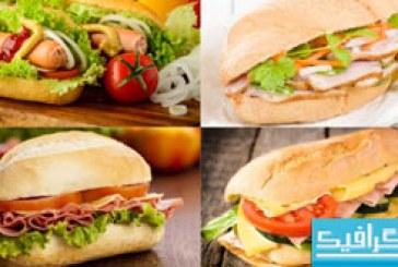 دانلود تصاویر استوک غذا های فست فود – شماره 3
