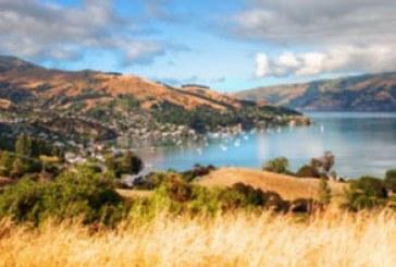 دانلود والپیپر مزرعه – نیوزیلند