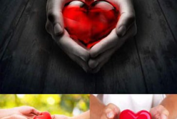 دانلود تصاویر استوک قلب در دست
