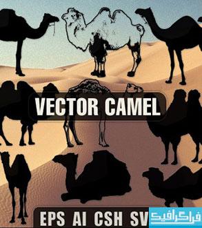 دانلود وکتور های شتر - طرح سایه - Camel
