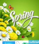دانلود وکتور طرح های بهار - Spring Design