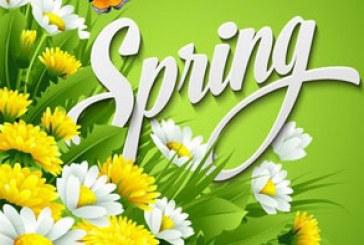 دانلود وکتور طرح های بهار – Spring Design