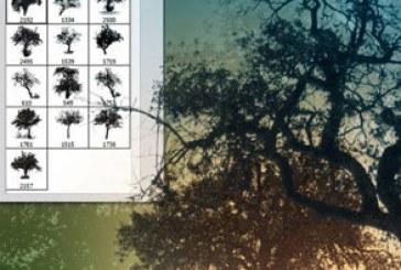 دانلود براش های فتوشاپ درخت – Trees Brush