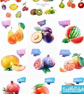 دانلود وکتور های میوه - طرح آبرنگ