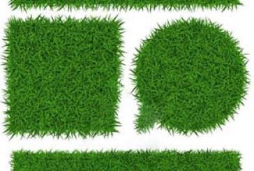 دانلود وکتور پترن های چمن – Grass Pattern