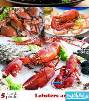 دانلود تصاویر استوک غذای خرچنگ
