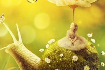 آموزش فتوشاپ ساخت تصویر ترکیبی دختر کوچک روی حلزون با صدف چمنی