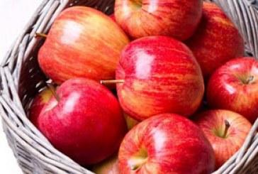 دانلود تصاویر استوک سیب – شماره 2