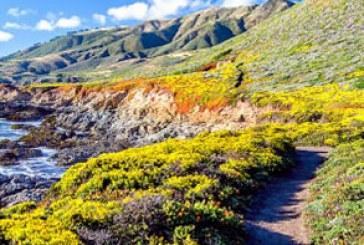 دانلود والپیپر های طبیعت کیفیت 4K – شماره 7