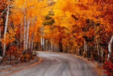 دانلود والپیپر پاییز – شماره 9