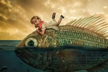 آموزش ویدئویی فتوشاپ ساخت تصویر ترکیبی ماهی