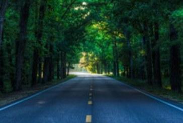 دانلود والپیپر جاده زیبا – شماره 2