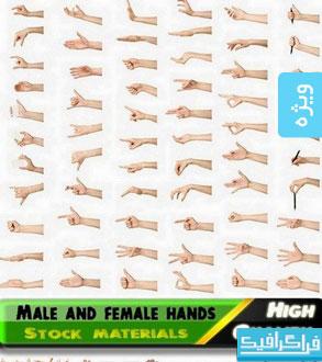دانلود تصاویر استوک دست زن و مرد