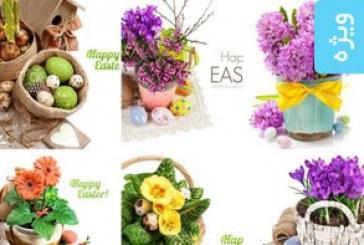 دانلود تصاویر استوک گل و تخم مرغ رنگی