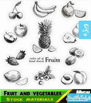 دانلود وکتور های میوه و سبزیجات - ترسیمی