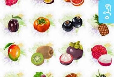 دانلود وکتور های میوه طرح آبرنگ – شماره 2
